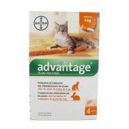 Advantage Chat et Lapin 1 à 4 kg x 4