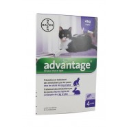 Advantage Chat 4 kg et plus x 4